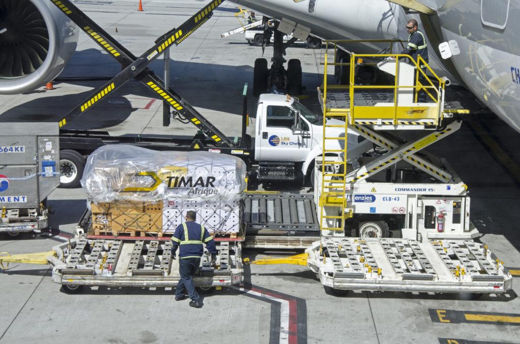 orchidées déchargées de l'avion Airbus A380
